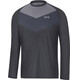 GORE WEAR C5 Trail LS Jersey Men terra grey